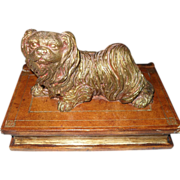 Pekingese Dog Guarding Trinkets in Leather Book Box