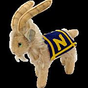 Naval Academy Steiff Mascot Plush Goat C. 1957