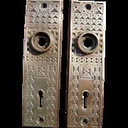 Pair Ornate Solid Brass Victorian Doorplates