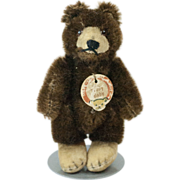 """1950s German Steiff Chocolate Brown Teddy Baby with Velveteen Face and Feet 3 3/4"""""""