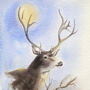 SALE Miralu Fort Worth Texas Artist Deer Art Watercolor