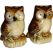 SALE Christmas Owls Salt and Pepper Shakers