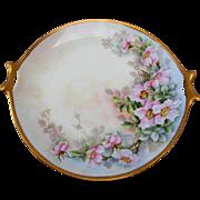 "Selb Bavaria H.P. 11 ¾"" Cake Plate w/Wild Roses- artist signed"