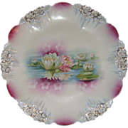 RS Prussia Plate Icicle Mold Reflecting Water Lilies