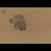 Dog print-Irish Setter- AKC breed standard