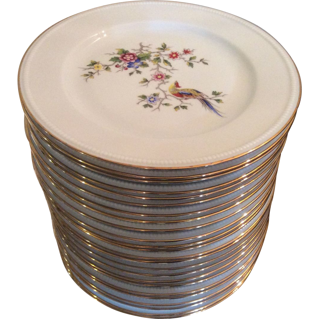 Limoges Dinner Plates By Bernardaud & Co. From