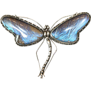 Fine Antique Art Nouveau sterling silver and butterfly wing dragonfly brooch - circa 1910