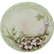SALE Antique Delinieres & Company Hand Painted Limoges Plate.