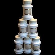 Set of 6 Milk Glass Spice Jars