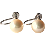 SALE Vintage 14K White Gold 9mm Cultured Pearl Earrings Screw-Back Style.