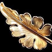 Vintage Signed Gold Tone Giovanni Oak Leaf Pin
