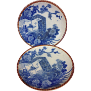Beautiful Pair Antique 19th Century Blue and White Porcelain Plates, Japanese Igezara Late 180