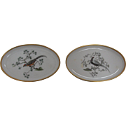 SALE Vintage Rosenthal Germany Marked China Pair of Oval Pheasant Dishes Pre-WWI