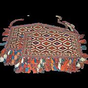 Turkmen Tribal Camel Rugs- Pair Circa Late 19th Century