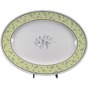 WEDGWOOD WINDRUSH W3973 Hand Painted Large Oval Platter