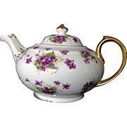 Royal Chelsea English Bone China Teapot