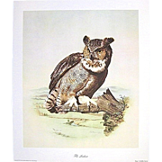 """SALE """"The Lookout"""" Signed Numbered E. Howard Burger Owl Print"""