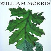 SOLD William Morris Art Furniture Design Tapestry Arts & Crafts Book Based on 1995 Exhibit