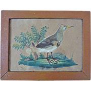 SALE Exceptional early GEORGIAN Watercolor Feather Painting in Period Frame