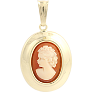 Carved Shell Cameo Pendant - 14k Yellow Gold Polished Oval Women's Fine Estate