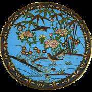 Japanese Meiji Era Cloisonne Charger
