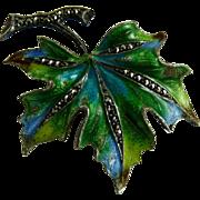Sterling Enamel Marcasite Leaf Pin marked Germany