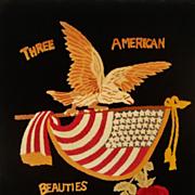 SALE Antique Needlework Stumpwork Bald Eagle American Flag Rose Picture Patriotic