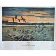 SALE 1988 Lars Larsen Ducks Unlimited Lithograph Print Signed & Numbered Waterfowl Award W