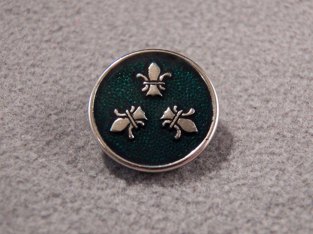 Vintage Steele Enamel Detailed Fancy Fleur Dis Lis Button