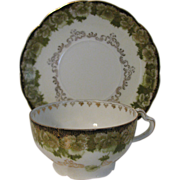 Vintage Rosenthal Cup and Saucer Bavaria