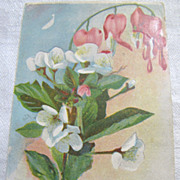 SOLD 1909, Beautiful German Postcard of Painted Flowers 1909‏