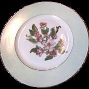 SALE Haviland & Cie Limoges 1876-1889 Hand Painted Cabinet Plate