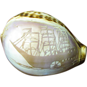 Hand Carved Cowrie Shell, Square Rigged Ship