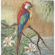 SOLD Harris, Art Order, Circa 1940's Painting of a Parrot with Original Frame