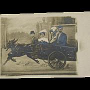 Donkey Cart Post Card