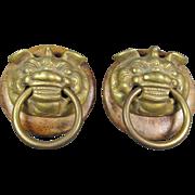 Pr Brass Foo Dog/Lion Pulls