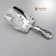 Louis XV Tea Caddy Scoop Whiting Patent 1891 Sterling Silver No Monogram