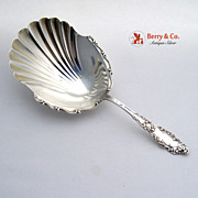 Cracker Spoon Luxembourg Gorham Sterling SIlver 1893 No Monogram