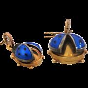 14K GF Ladybug Earrings, Lifted Wing, Blue Enamel