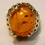Exceptional Amber Ring in 14K yellow Gold