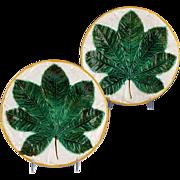 Superb 19th Century George Jones Majolica Plate Chestnut Leaf