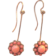 Antique Victorian 10kt Coral Cluster Earrings