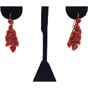 Victorian Natural  Coral Earrings with Leaves and Buds  10kt Earwires