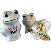 Pretty Little Comic Character Frog Salt & Pepper Shakers with Flower Decorations