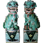 Pair of Chinese Porcelain Famille Verte Fu Lions
