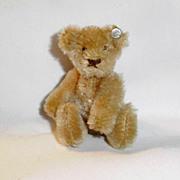 Old Tan Mohair Steiff Teddy Bear with Silver Button