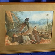 Watercolor painting of the birds in a landscape after A.Thorburn