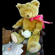"""SALE Antique Mohair Teddy Bear-Huge 25"""" Tall"""
