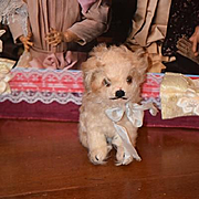 SOLD Wonderful Old Dog for Doll Mohair Jointed Head CUTE