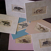 Antique Hand Colored Engravings 1836 Animals (7)